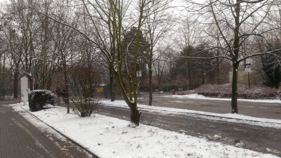 Winter in Germany in early 2018